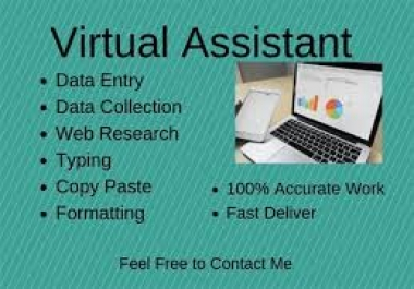 do any type of Data entry in Ms Excel, Word,Internet/Web research,Web scraping,  Proofreading&Editing, Data collection, Manual typing of scanned documents, PDF to excel,Word or power point,