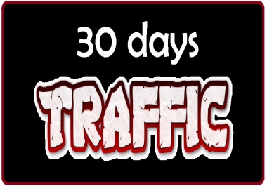 drive 30 days  organic traffic to any shop store website ebay amazon etsy shopify