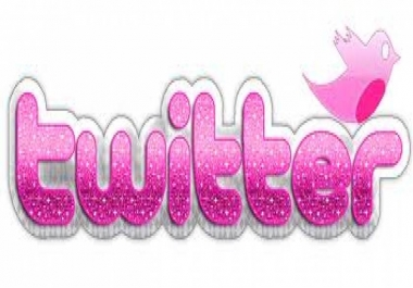 Provide you 500+ High Quality Real Looking Twitter followers