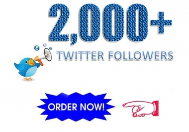 Provide you 2000+ High Quality Real Looking Twitter followers