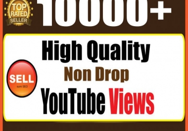 provide 10,000+ Permanent Youtube Views Life time guarantee (High Quality)