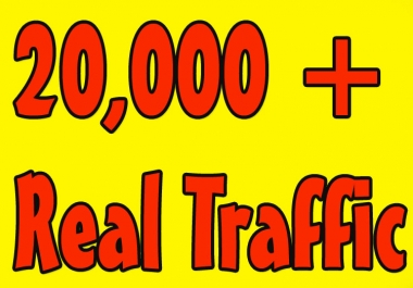 provide 20,000 USA web traffic
