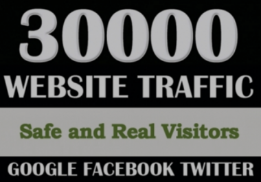Give You 30,000 Real/Human/Unique Visitors Safely.