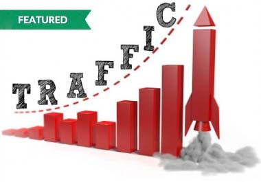 Give you 30,000 Guaranteed USA Visitors to your site with proofs