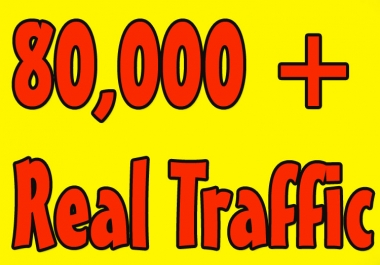 Give you 80,000 Guaranteed USA Visitors to your site with proofs