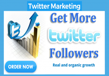 Do Organic Twitter Promotion To Gain 250+ Real and Permanent Followers