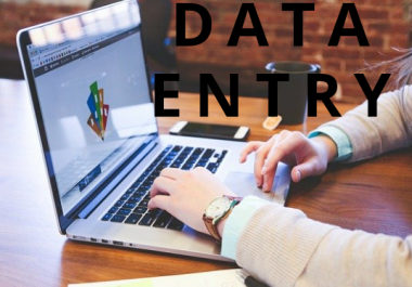 do virtual assistant from data entry,pdf to excel or word and copy paste jobs