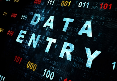 help you and your business doing Data Entry task hourly