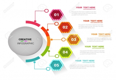 design a professional and attractive infographics for your business