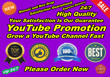 Do Real YouTube Promotion Fast Delivery