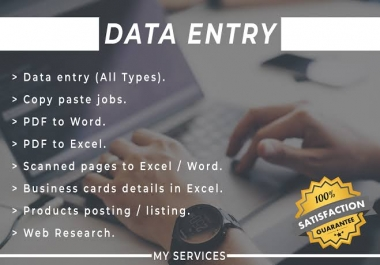 do professional data entry service, web research, copy paste