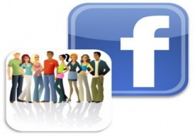 give you 1000 facebook real fans likes facepage in 3 days