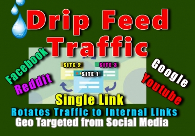 Drip Feed High Quality Web Traffic from Social Media for 1 month to all your links