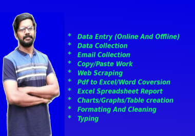 be your virtual assistant for data entry job