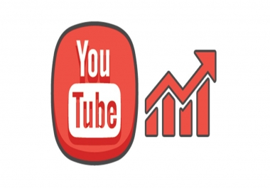 give you 300 fast  youtube views