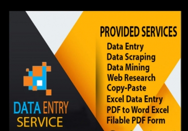do professional data entry operator with great accuracy