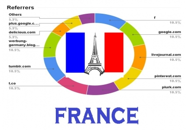 drive real organic FRANCE traffic to website store Blog SHOP   with live analytics