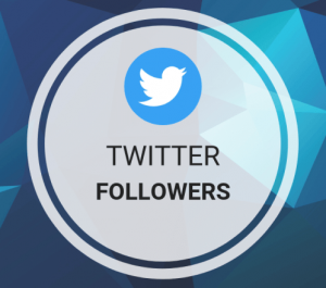 give you 500 FOLLOWERS or 600 LIKES or 400 RETWEETS on twitter