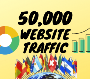 Provide you real 50,000+ USA,UK,FRANCE website traffic visitors from worldwide