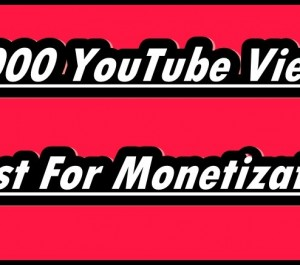 Provide 1000 YouTube Views Monetization With Life Time Guarantee