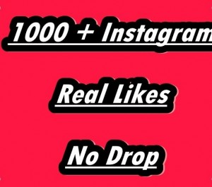 Provide 1000 Instagram Non Drop Real Likes
