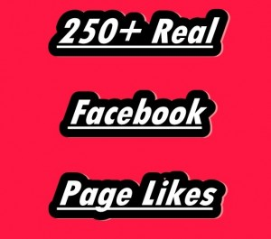 Provide 250+ Real Facebook Page Likes With 15 Days Refill