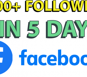 Give you 1000 REAL Facebook fan page followers in 5 days