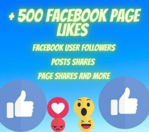 Deliver you Fast Facebook page or profile 500 likes or followers high-quality promotion Real organic Nondrop guaranteed for life