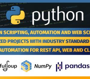 do python scripting for any job