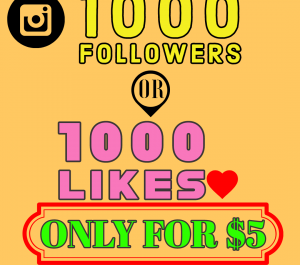 Give you 1000  REAL Instagram followers in 3 days