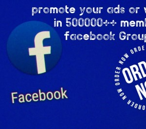 going to send and drop your solo ads instantly to 40 million +10 million Facebook users in 24 hours.