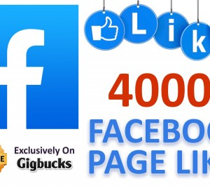 provide 4000 FACEBOOK Page Likes for your Page