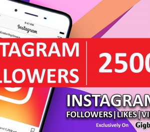 provide you 2500 High Quality INSTAGRAM Followers