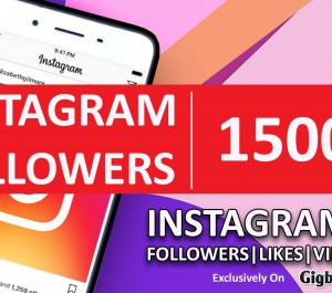 provide you 1500 High Quality INSTAGRAM Followers
