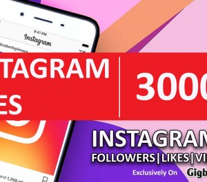 provide you 3000 High Quality INSTAGRAM Post Likes