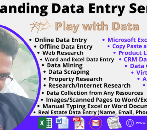 do data entry, copy paste, web research, typing work, excel data entry job