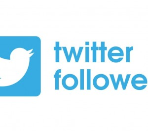 Increase Organically Permanent 1000+ Twitter Followers