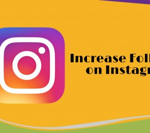Add 10000+ New Real Instagram Followers