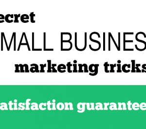give you small business marketing secrets to DECIMATE the competition