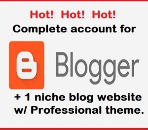 give you a complete package of blogspot account with 1 niche blog website