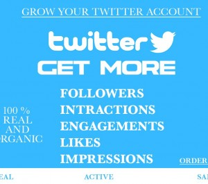 do organic twitter growth and promotion to increase followers