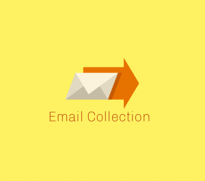 provide any niche based email list for business leads