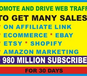 drive sales to your affiliate, solo ads, ebay, etsy, shopify or web traffic