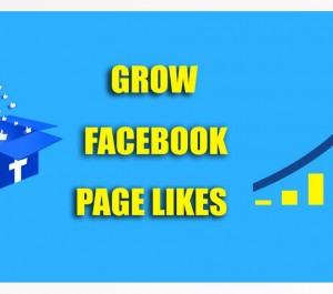 promote your Facebook Page to 500+ Likes