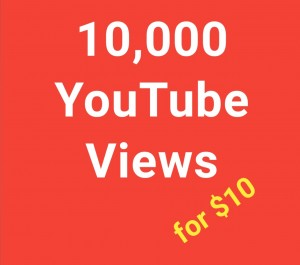 Give you 10,000 YouTube Views Promotion Nondrop Lifetime Guarantee