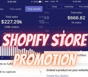 promote your etsy ebay amazon shopify store products to USA people