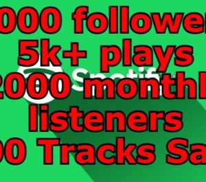 Get Spotify 2000 followers & 5k+ plays & 2000 monthly listeners & 300 Tracks Save
