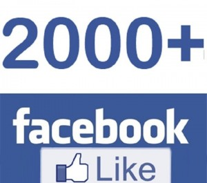 ADD you 2000+ Facebook Page likes Lifetime Guarantee
