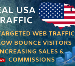send 60,000 USA GEO Targeted Traffic Visitors to your Website
