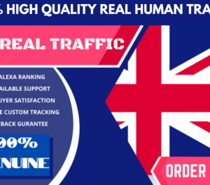 send 60,000 UK GEO Targeted Traffic Visitors to your Website